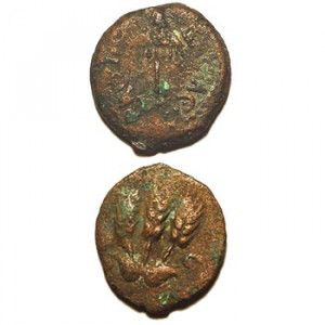 Bronze Jewish coin of King Herod Agrippa I – Minted 41-42 A.D.