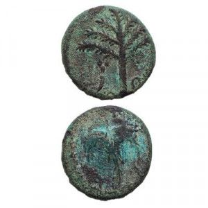 Second Revolt Jewish Coin Simon Bar Kochba