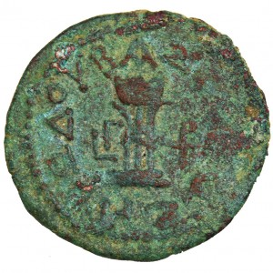 herod the great is the king coin